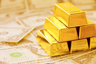 Gold-Bars-and-Money41